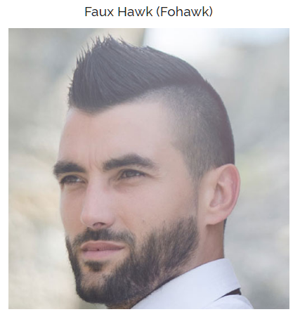 Faux Hawk (Fohawk)