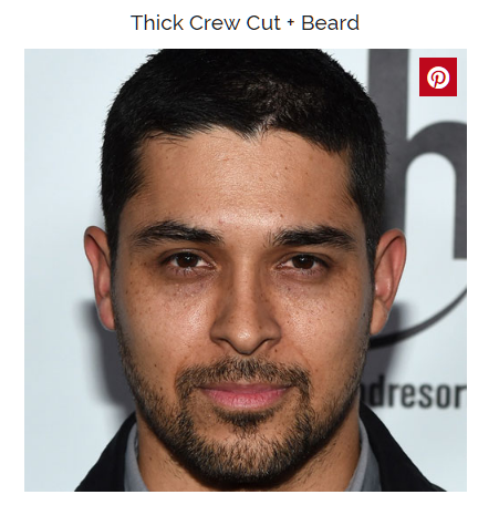 think crew cut with beard